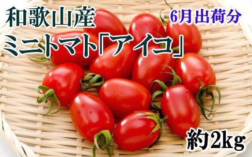 ミニ トマト アイコ